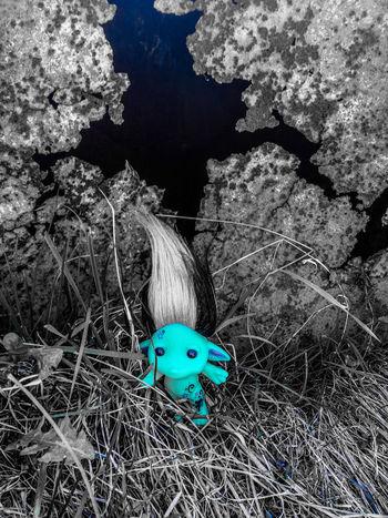 magiczna czasoprzestrzeń Zelfy Zelfs Blue Niebieski Màgia Piękno