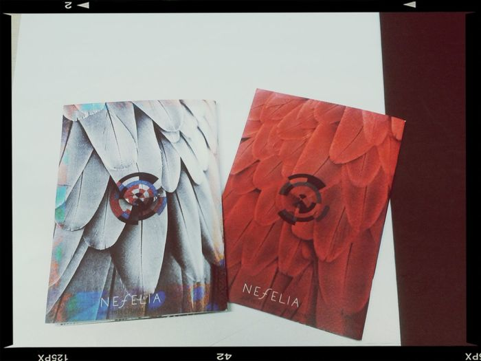 Rain Forest catalogues out of the print!♥♥♥ Pinknanami Architecturalfashionbynefelia Uniquejewelry Bynefelia