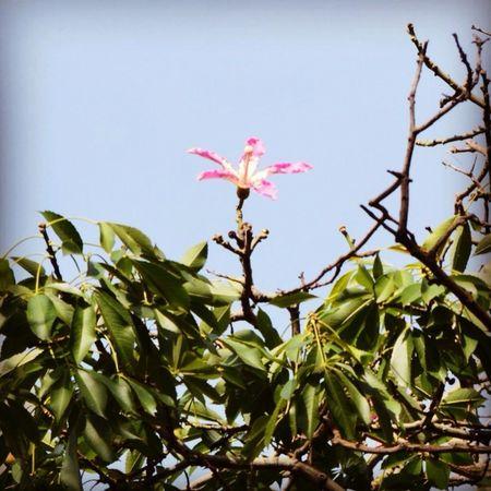 Hello World Hi! #landscape #nature #photography EyeEm Nature Lover