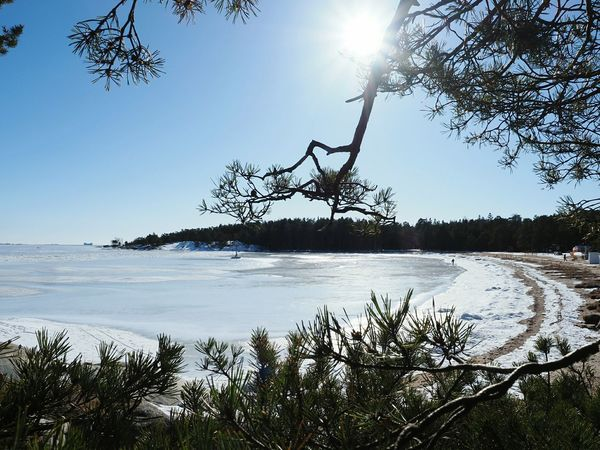 Nature_collection Nature Beauty Winter Nature Outside Winter Holidays On The Beach Enjoying The View Winter Walks On The Beach Snow Covered Trees Archipelagos Hanko Finland Snow Sunny Winter Day