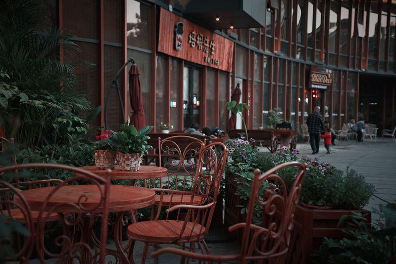 Chair Flower Outdoors