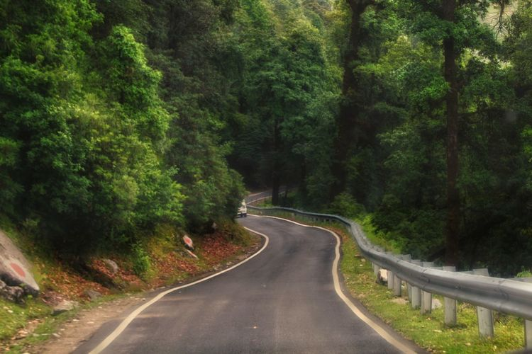 Road Tree The Way Forward Transportation Winding Road Asphalt Outdoors No People Curve Nature Scenics Landscape Day Beauty In Nature Sky