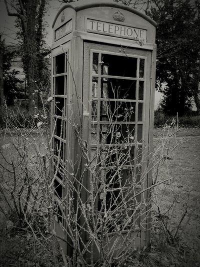 Vergessene Telefonzelle Lippe Burg