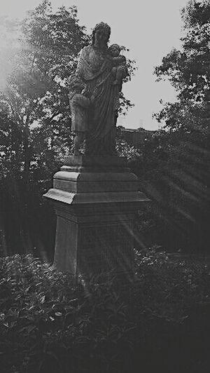 Oakwood Cemetery Syracuse Ny Cemeterybeauty Grainy Edit Blackandwhite Photography EternalSleep