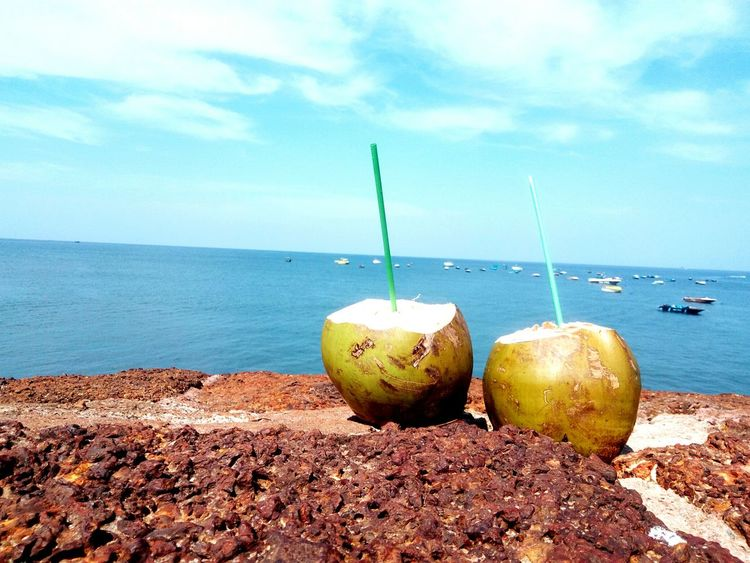 Sea Sand Horizon Over Water Outdoors Drinking Straw Vacations Nature Fruit Food Freshness Beach Coconuts Beauty In Nature Healthy Eating No People Close-up India Goa Aguada_Fort Travel Beauty In Nature Aguada Tourism Ocean Landscape