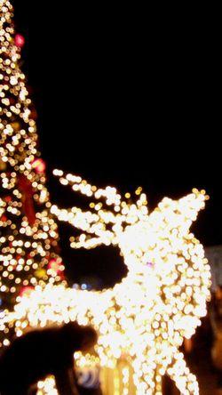 Textile Night City Life Capture The Moment EyeEmBestPics EyeEm Selects EyeEm Best Shots Urban Exploration EyeEm Nature Lover Christmas Lights Christmas Around The World Christmas Ornament Christmas Spirit Christmas Eve Joyeux Noël**Marry Chrismas**Feliz Natal JOY ❤️