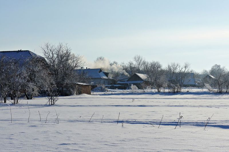 Trees and houses on field against sky during winter