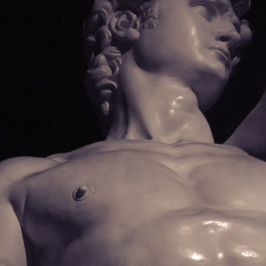 Close-up El David Escultura Hombre Bello Joven Marmol Michelangelo Miguel Angel  Museum No People Sculpture Statue