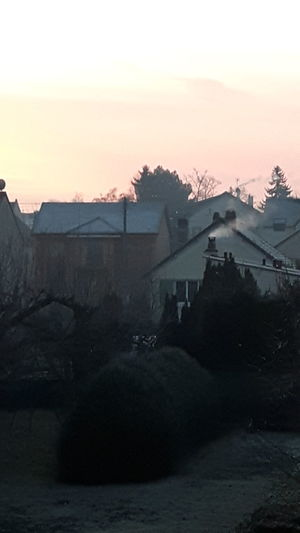 Early Morning Sky SkypinkFrom My Window Garden Cold Temperature Houses Smoke From The Chimney Nature Nature_collection Nature Photography Naturelovers Adapted To The City
