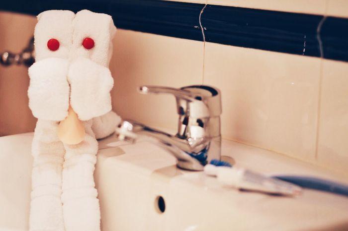 my pet towel! :) Beauty Insider Towel Animal Bathroom