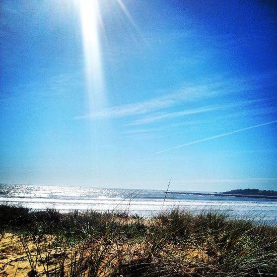 Saintgillescroixdevie Vendée Instavendee Igersvendee igersfrance plage soleil igers igersstgillescroixdevie picsoftheday instastgillescroixdevie photographyoftheday photographiedujour