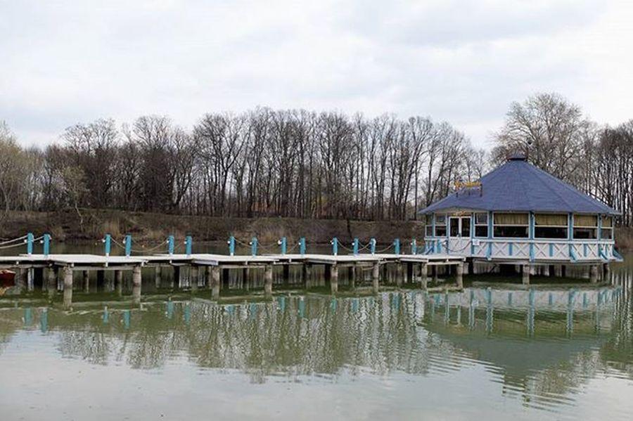 Peace @ the lake, relaxing, getting inspired Pier Lake Lakeside Gyomro GyömrőiTófürdő Hungary Trip Travel Travelingram Relax Inspiration Mik Ikozosseg Ikozosseghungary Ig_hungary Ig_hun Nofilter Nofilterneeded