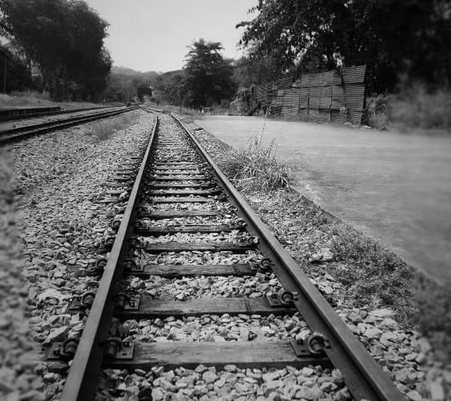 """""""Don't go where the road leads, rather go where there is no road and leave a trail.~Train Tracks & Railroad Quotes~ Railroad Track Rail Transportation Transportation The Way Forward No People Outdoors Day Railroad Tie Outdoorphotography Outdoor Photography Outdoors Photograpghy  Eye4photography  Bnw Bnw_captures Bnw_photography Blackandwhite Black And White Bnw_lover Hello World Check This Out Quoteoftheday Self_reflection The Great Outdoors - 2017 EyeEm Awards Blackandwhitephotography Bnw"""