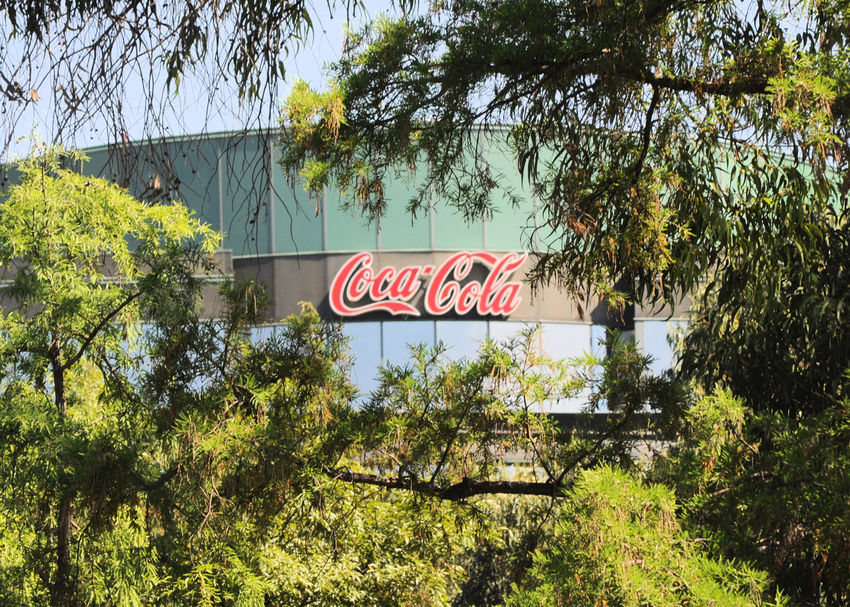 I'd like to teach the world to sing... Coke Company Mexico City Surrounded Architecture Branch Centered Composition Communication Day Factory Growth Low Angle View Lush Greenery Nature No People Outdoors Red Letters Sky Text Tree