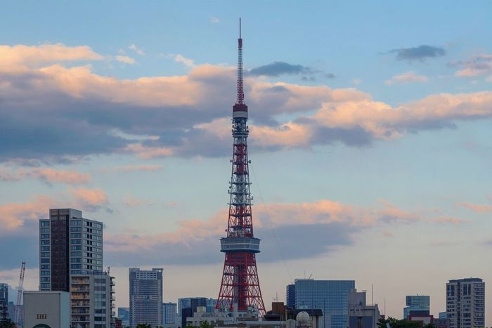 Tokyo Tokyo Street Photography Tokyo Tower Tokyo,Japan Architecture Building Building Exterior Built Structure City Cloud - Sky Global Communications Low Angle View Nature No People Office Building Exterior Outdoors Sky Skyscraper Spire  Sunset Tall - High Tourism Tower Travel Travel Destinations