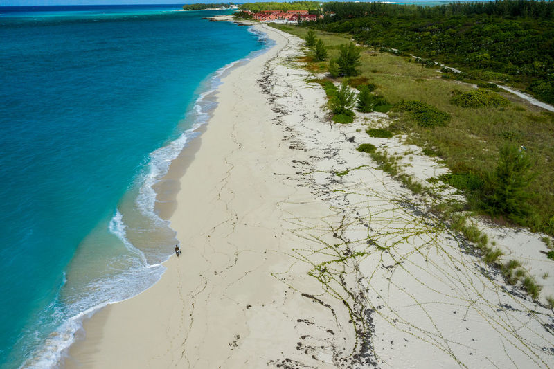 Shells Beach Land Sea Beach Water Sand Nature Day Beauty In Nature Tranquility No People Sport Motion Aquatic Sport High Angle View Tranquil Scene Wave Scenics - Nature Outdoors Bimini