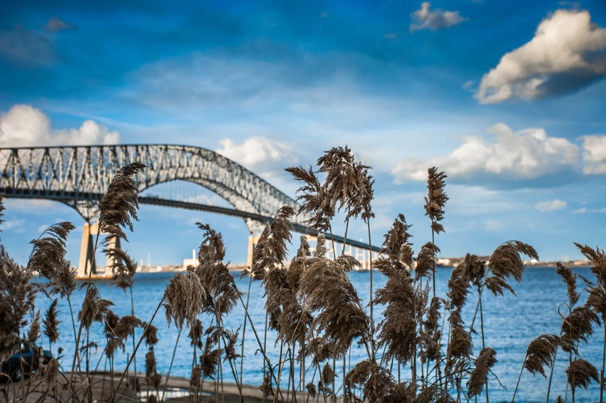Francis Scott Key Bridge from Ft. Armistead Park in Baltimore, MD Architecture Baltimore Beauty In Nature Bridge Bridge - Man Made Structure Cloud - Sky Cufotos Day Key Bridge Maryland Nature Nikon Nikonphotography No People Outdoors Patapscoriver Scenics Sky