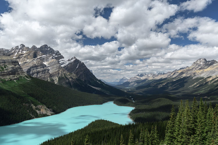 Rocky mountains and Peyto Lake in Banff National Park Scenics - Nature Mountain Beauty In Nature Sky Tranquil Scene Mountain Range Tranquility Nature Cloud - Sky Plant Environment Non-urban Scene Landscape Idyllic No People Day Peyto Lake Alberta Canada Lake Glacial Tourquise