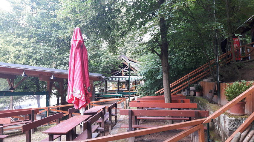 German beer garden. Ale-bench Ale-benches Bavaria Bavarian Culture Beer Garden Beergarden  Bench Benches Culture Day German German Beer Garden German Beergarden Green Color Growth History No People Outdoors Red Tourism Tourist Resort Tranquility Tree Vacations Vibrant Color