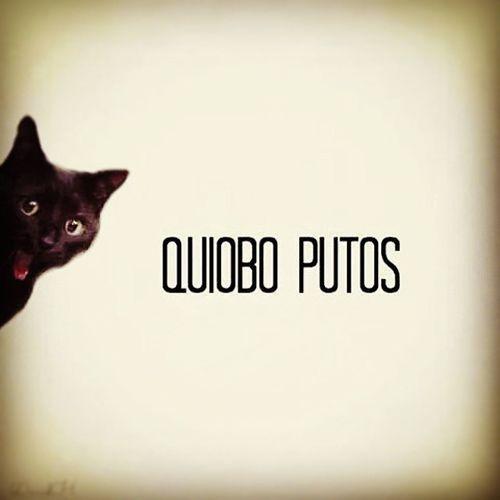 QuiuboPutos