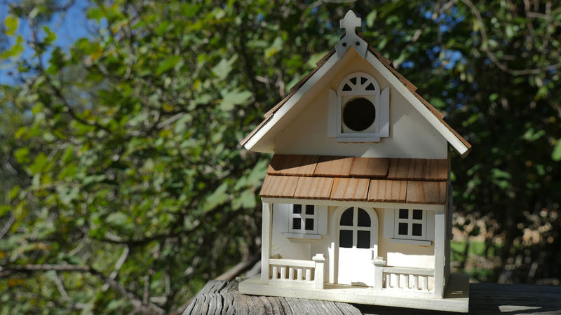 Birdhouse Arts And Crafts Backporch Backyard Backyard Birder Bird House Day Handcraft Handcrafted Landscape Miniature Houses Outdoors Tree Tree House Wood Art
