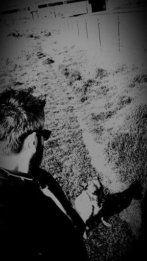 My Dog Dog Waiting Turkey Ankara Yht Blackandwhite Black And White