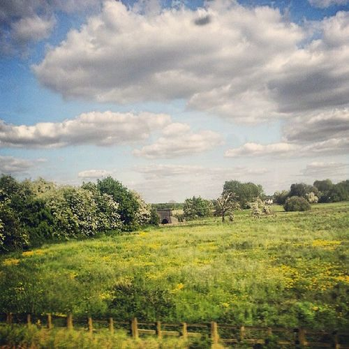 View from train of the Englishcountryside in the Summer