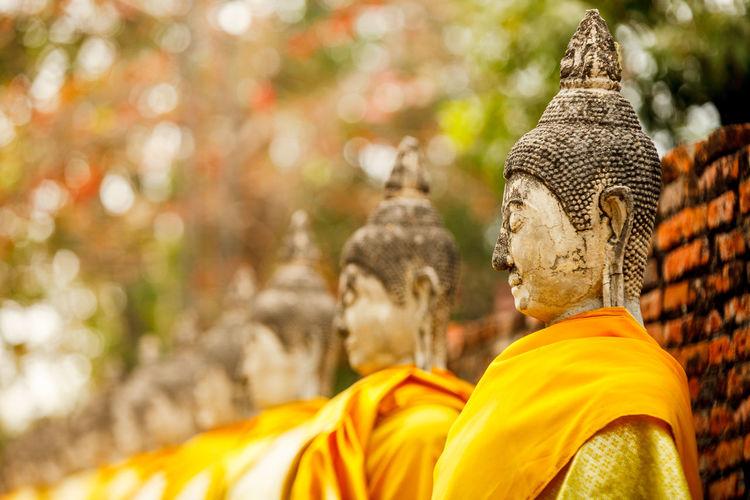 Buddha statues against trees