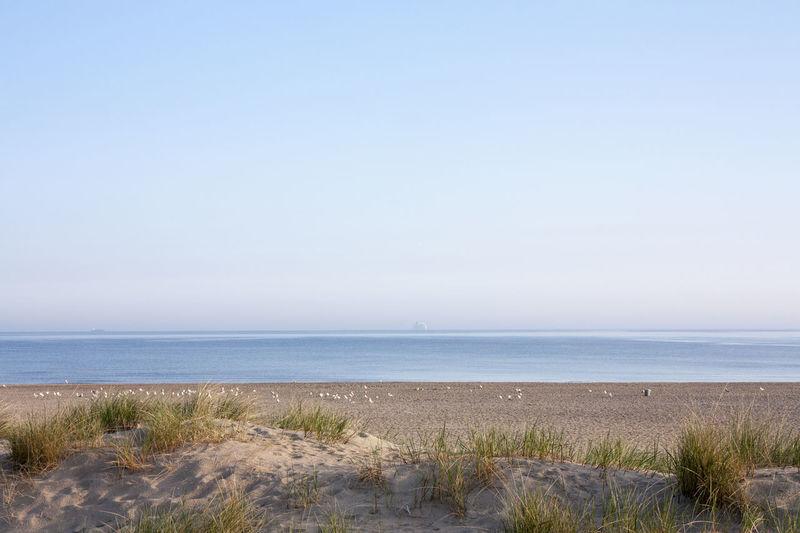 Baltic Sea Calm Sea Die Schönheit Des Nordens Die Stadt Am Meer Early In The Morning Hansestadt Hansestadt Rostock Marítim Norddeutschland Rostock Rostocker Ansichten Tranquility