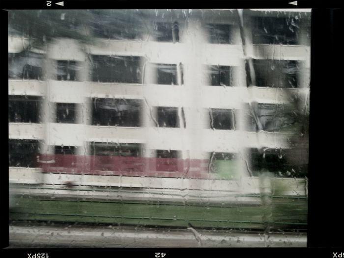 Wet N Blurry Day