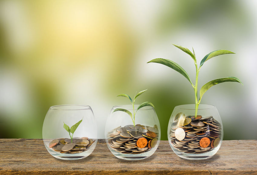 Investment concept. Growth plant on coins three step in clear glass bottle on wooden table with green blurred background and light. Conceptual saving money for growing business and future Business Currency Growing Growth Investing in Quality of Life Background Bank Banking Cash Coin Concept Earnings Economic Finance Financial Green Color Growth Ideas Investment Leaf Money No People Plant Saving Table