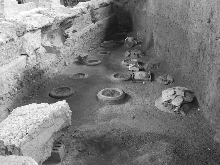 Ancient Archaeology Archeology Campania Close-up Day Nature Nature No People Outdoors Pompeii  Somma Vesuviana Vesuvius  Villa Augustus