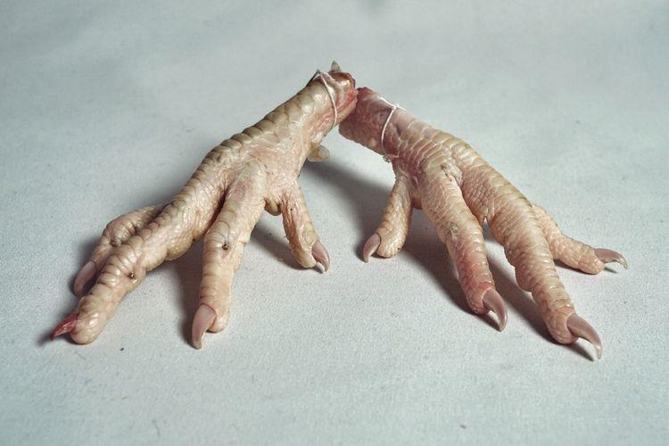 kurczak 03 Minimal Stark Fingers Hand Symmetry Balance Reptilian Avian Texture Skin Scales Chicken Feet Bird Feet Claw Feet Animal Animal Themes Close-up Food And Drink Nature