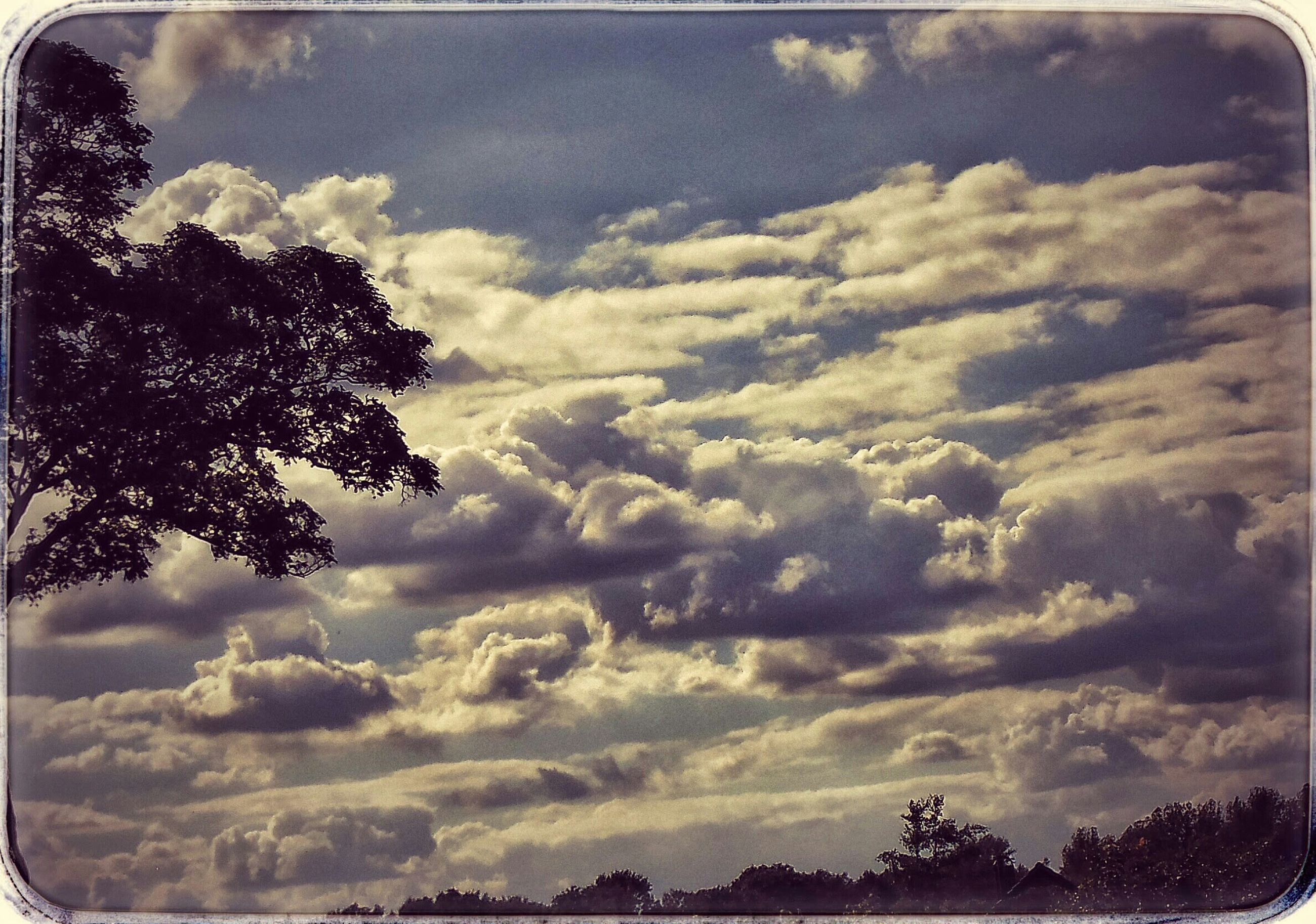 sky, transfer print, cloud - sky, tree, auto post production filter, cloudy, tranquility, tranquil scene, scenics, beauty in nature, cloud, nature, low angle view, silhouette, idyllic, outdoors, landscape, no people, day, weather