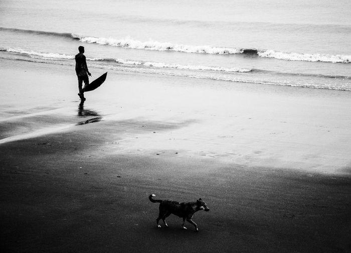 Silhouette man walking at beach