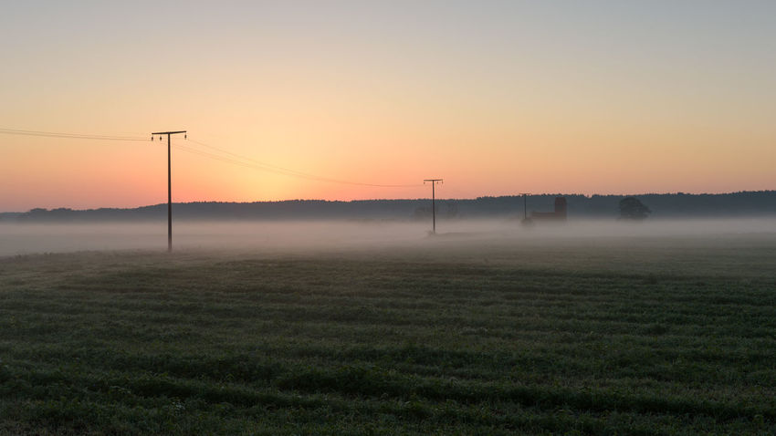 Havelland Germany Naturpark Westhavelland Wittzke Beauty In Nature Cable Day Electricity  Electricity Pylon Field Fog Fuel And Power Generation Grass Hazy  Hohennauen Landscape Nature No People Orange Color Outdoors Scenics Sky Sunset Tranquil Scene Tranquility Tree