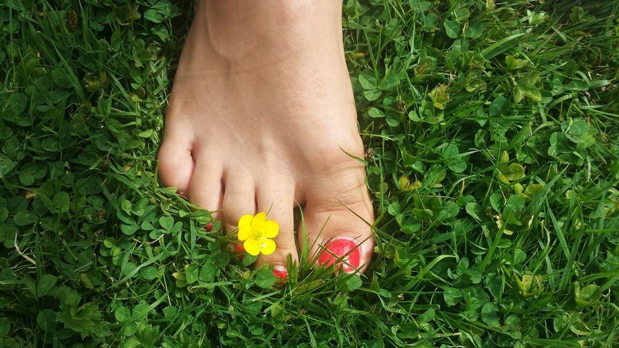 Close-Up Of Foot Of Woman Near Flower