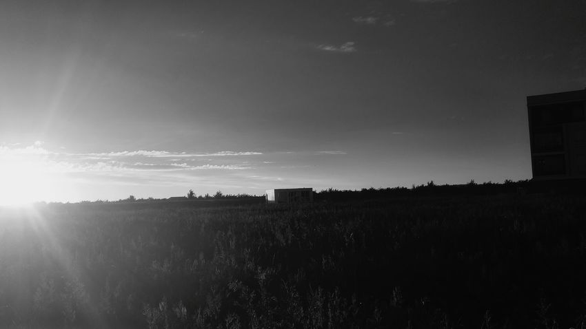 Sunset Sun Sunlight No People Landscape Black And White Summer Outdoors Sky Nature Day