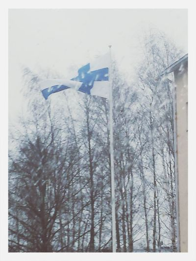 Suomi Finland Independence Day 6.12.1917