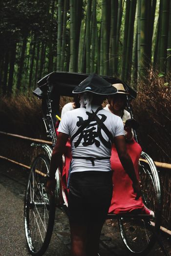 Rear view of man standing against rickshaw in bamboo groove