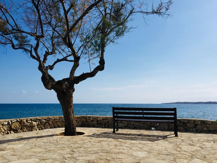 Water Sea Sky Beach Land Beauty In Nature Horizon Over Water Tree Nature Horizon Plant Bench No People Sunlight Outdoors