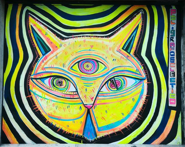 Multi Colored Concentric Lion - Feline Graffiti Taking Photos Spray Paint Creativity Mural Art Ilovephotography Looking At Camera Bogotacity Street Art Sicodelico Psicodelic Cattails Catgraphy Animal Cats 🐱 Feline Domestic Cat EyeEm Selects Sometimes Close-up Pattern