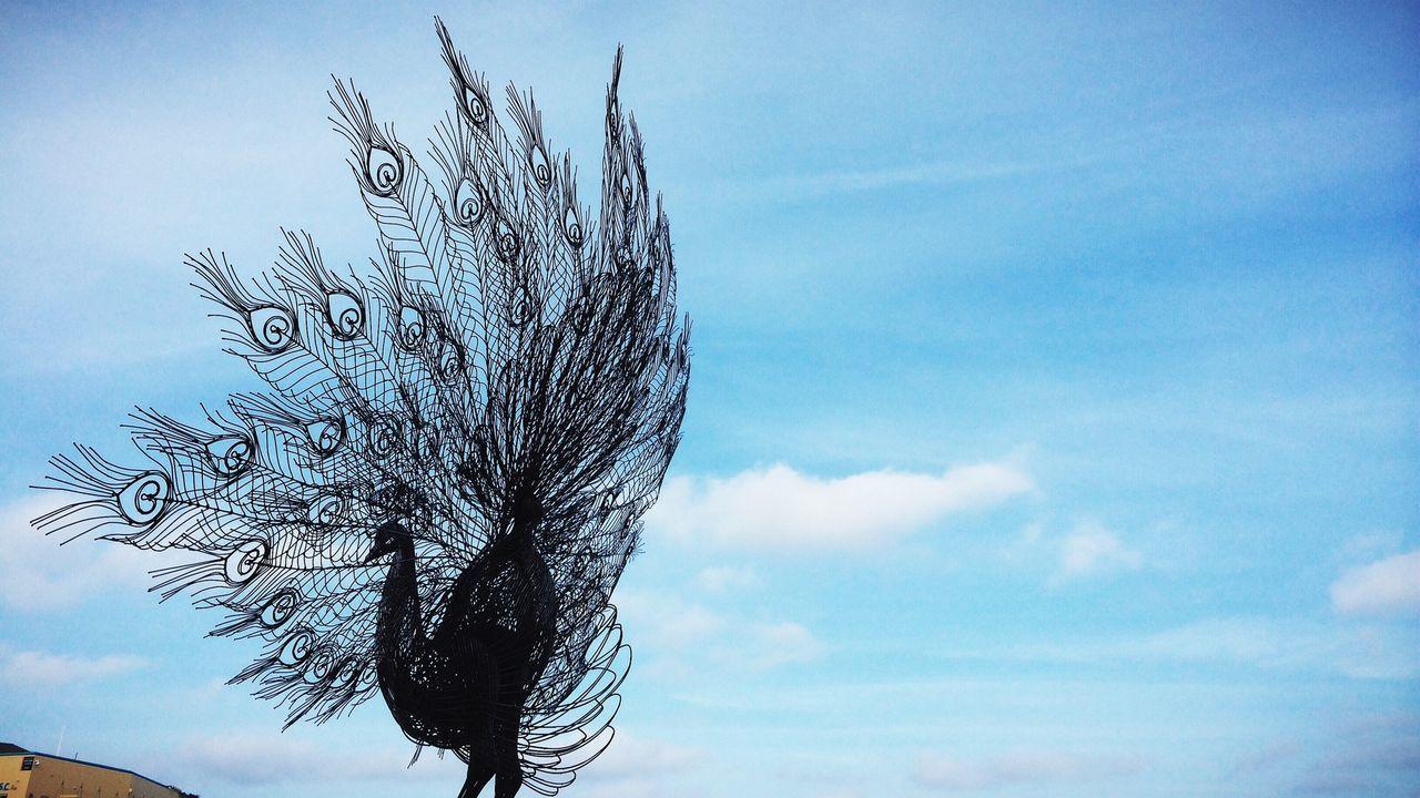Peacock representation against blue sky