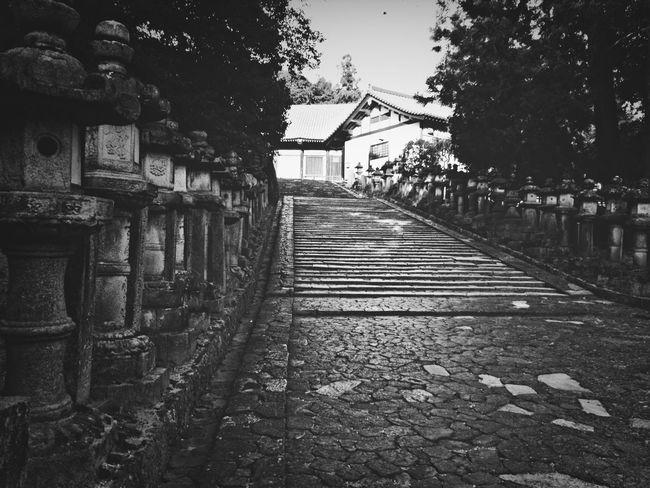 Stone Lantern Blackandwhite Landscape Steps