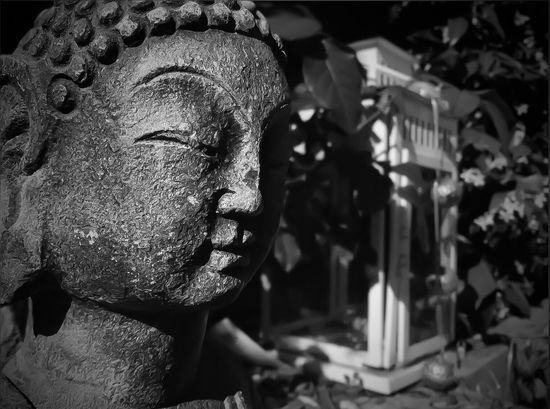 Garden Buddha 😌🏵 Buddah Focus On Foreground Ornamental Garden Ornament Garden B/w Zen Ipadphotography Inner Peace Innocence Peace Peaceful ASIA Stone Carving - Craft Product Meditation Sunlight Shadows Shades Of Grey Chipped Stone Black And White