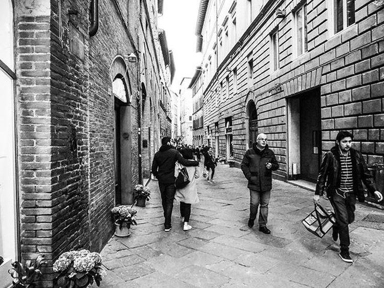 🆕 Foto di Siena 26-03 🐵 BuonaNotte Notte Siena Italy Tuscany Toscana Italia Igerstoscana Igerssiena Igersitalia Picoftheday Ig_siena Igersiena Photooftheday Instagood Ig_toscana Street City Streetphotography Streetart Biancoenero Blackandwhite Bw Bnw