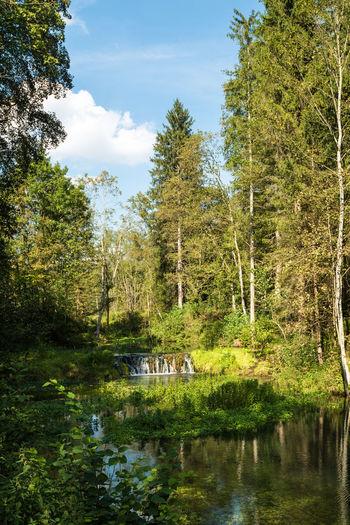Autumn Day Green Nature Outdoors Sun Sunny Sunny Day Swabian Alb
