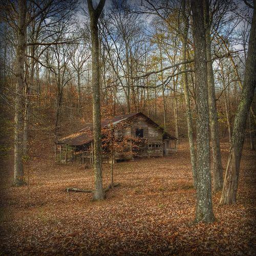 Hidden Decay Old Barns Eye4photography  EyeEmBestPics EyeEm Best Shots EyeEm Nature Lover Barn #barnporn #spring #nature #hdr #color Tadaa Community