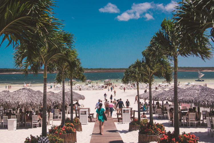 People walking on beach by palm trees against blue sky