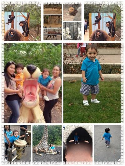 A day in the Zoo w/my bby (: